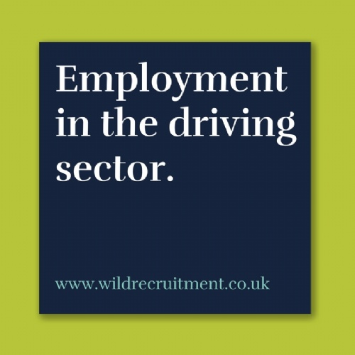 Employment in the Driving Sector